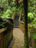 Te_Wairoa_019_11132004