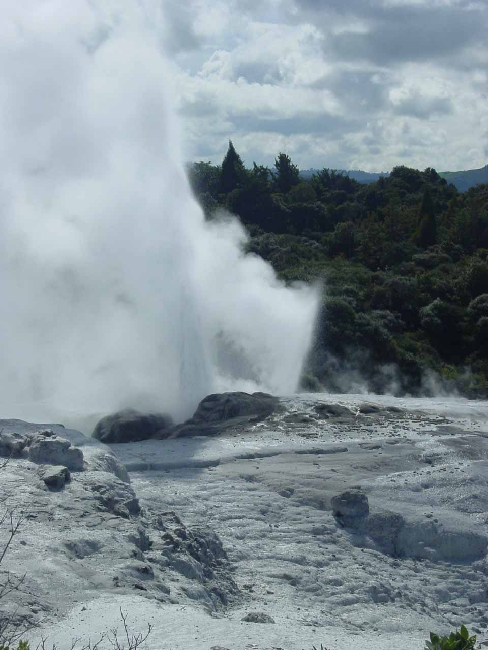 Hell's Gate was barely 15km or so northeast of Rotorua, which featured the Te Whakarewarewa Thermal Reserve, which itself featured the Prince of Wales and Pohutu Geysers