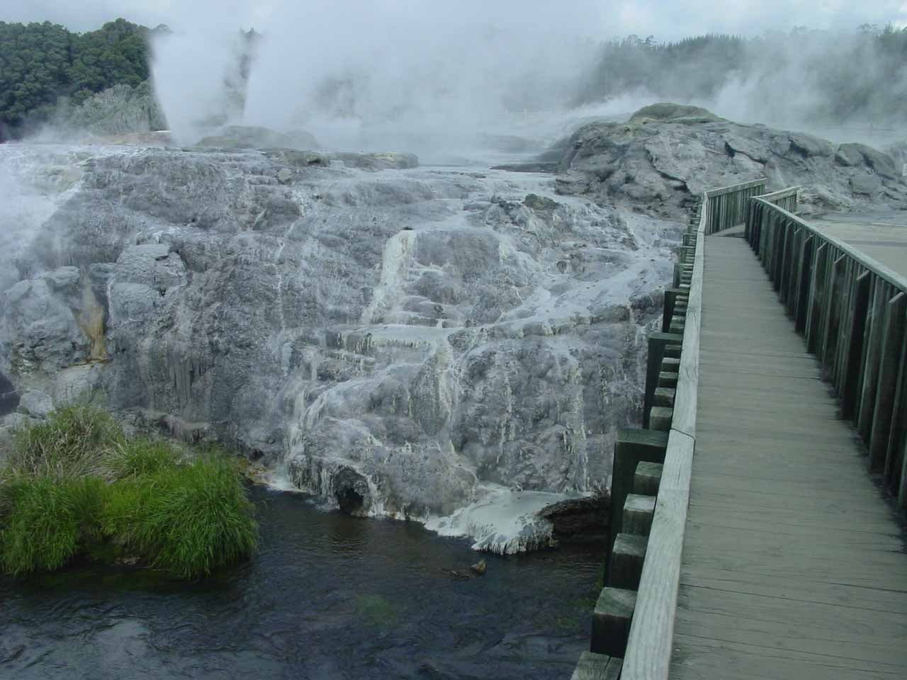 After visiting McLaren Falls and Marshall Falls, we would eventually settle in at Rotorua, where we checked out some geothermal reserves like Te Whakarewarewa
