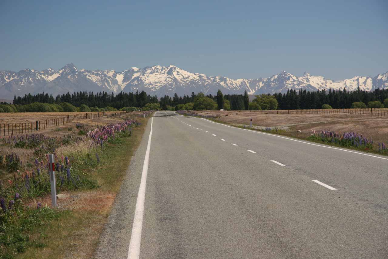 As we were driving west towards Tekapo from Geraldine, we started to see the chain of snowy mountains of the Southern Alps in the distance