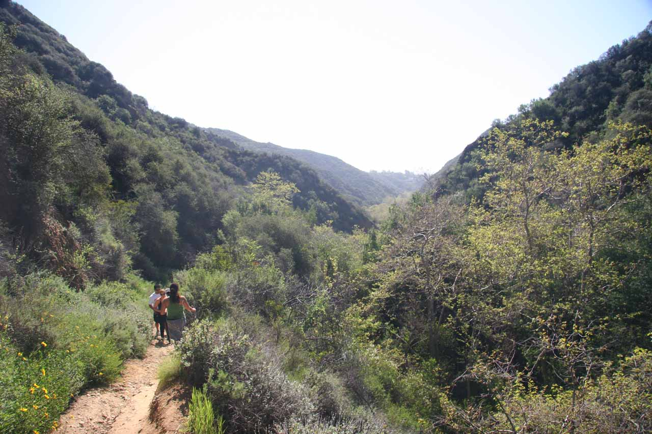 View of Temescal Canyon looking downhill