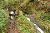 Tendaki_061_10222016 - Mom and Dad ascending alongside more intermediate cascades as the Tendaki Trail continued to climb past the shelter
