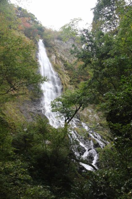 Tendaki_104_10222016 - Looking up at the Tendaki Waterfall before we made the climb up the steps to the lookout area right in front of a shrine