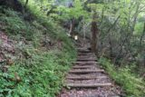 Tendaki_160_10222016 - Looking back at the steps that we had to take to get up to the Tendaki Waterfall Lookout, but now we're headed back down