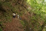 Tendaki_175_10222016 - On the way back to the car park, we noticed a lot more hikers making their way up to the Tendaki Waterfall