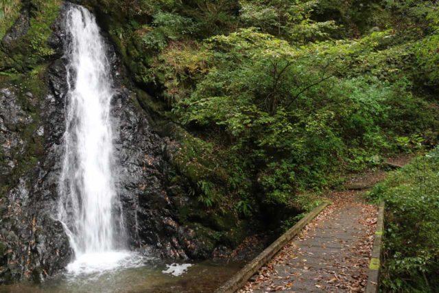 Tendaki_177_10222016 - One of the notable intermediate waterfalls seen on the hike up to the Tendaki Waterfall