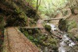 Tendaki_179_10222016 - Continuing to cross the bridges on the way back from the Tendaki Waterfall