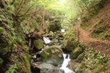 Tendaki_199_10222016 - Looking back towards the context of the Tendaki Waterfall Trail and the intermediate waterfalls besides it
