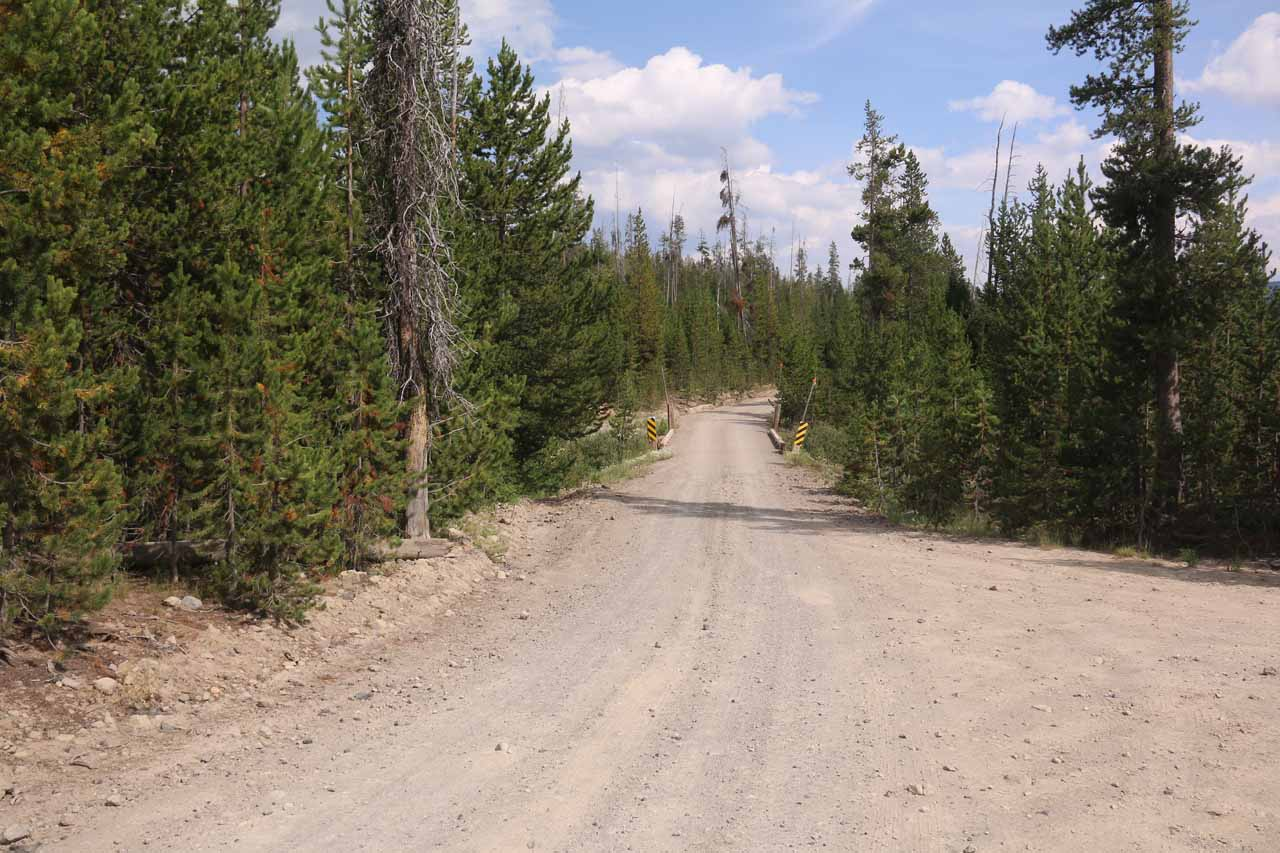 Looking back along the Grassy Lake Road or Reclamation Road