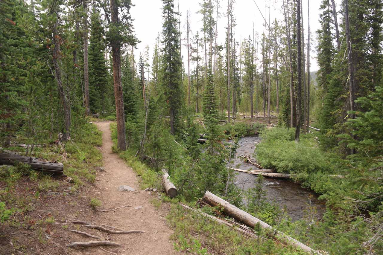 Meanwhile, the Terraced Falls Trail continued descending alongside Cascade Creek