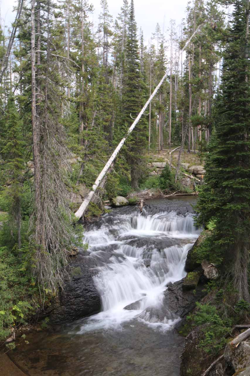 Although it wasn't the first cascade I noticed along Cascade Creek, this was the first one I got to see cleanly from the Terraced Falls Trail.  It was informally called the 'Diamond Cascade'