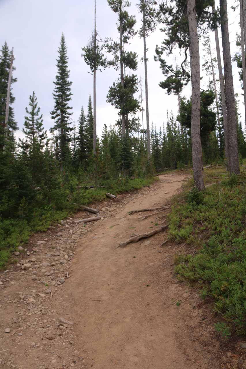 The final climb leading up to the Cascade Creek Trailhead