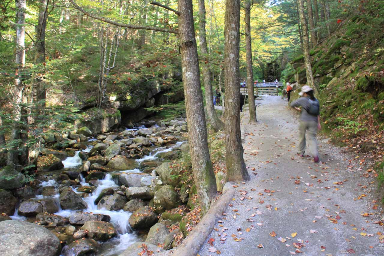 Beyond Table Rock, the trail continued to follow the Flume Brook