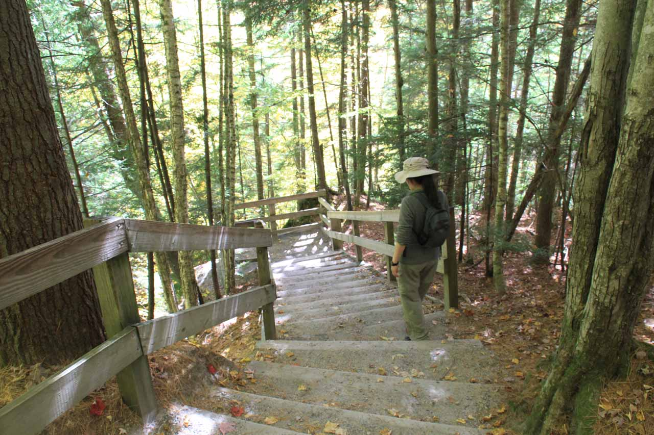 Julie walking down to the steps to the Liberty Cascade lookout
