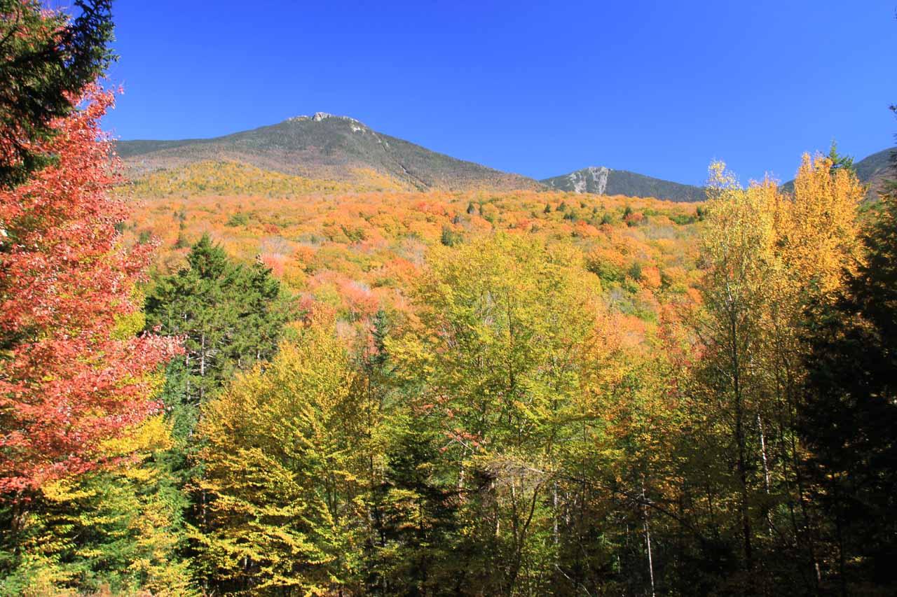 Autumn colors looking towards Mt Washington