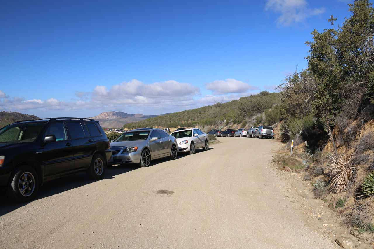 When we finally showed up, there were already a lot of cars parked alongside Boulder Creek Road