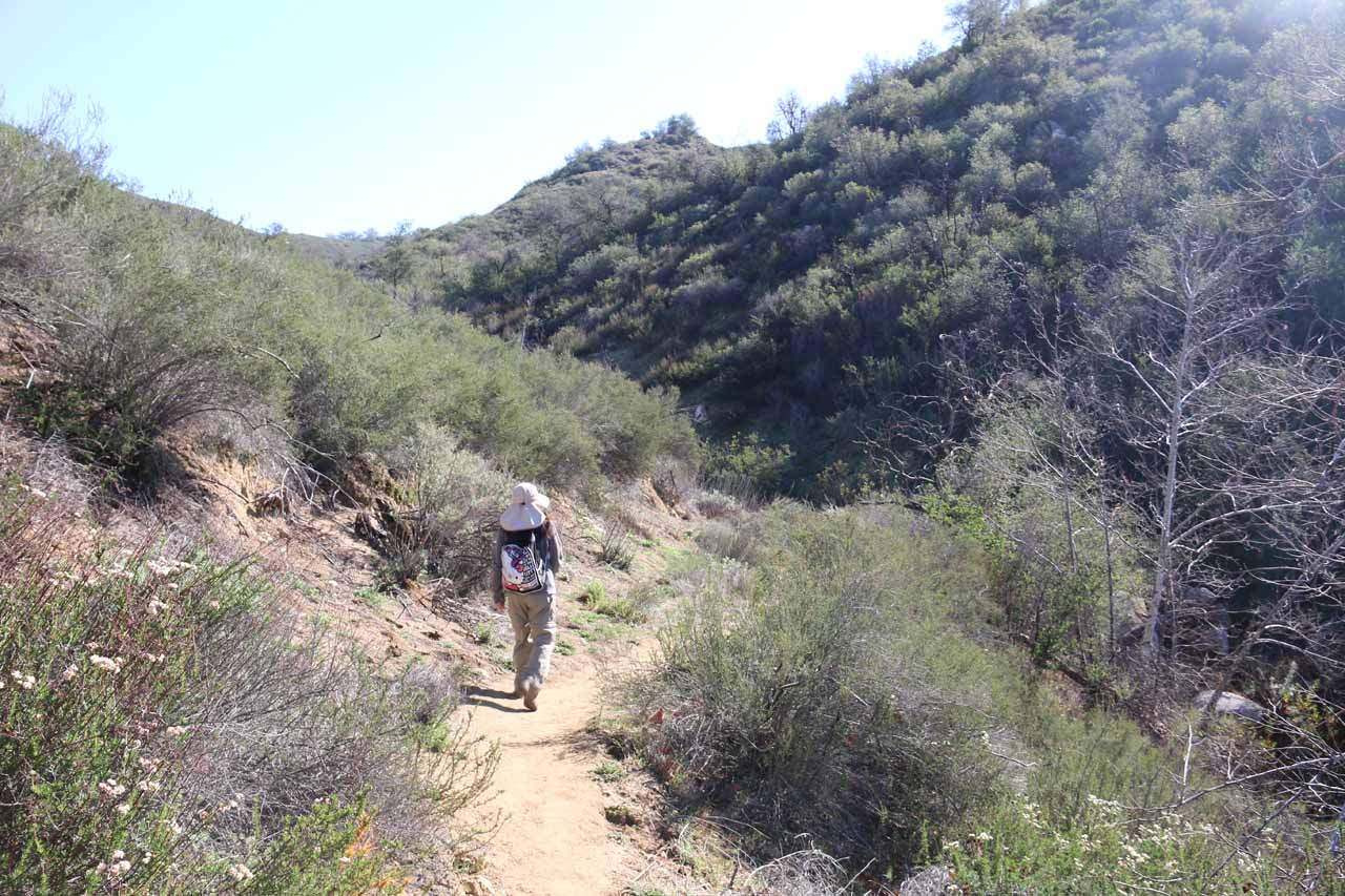 Julie approaching the somewhat shadowy ravine adjacent to the dry Camp Creek