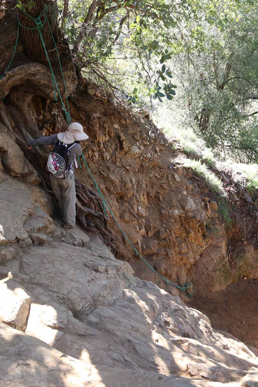 This was the scary rock wall at the very bottom of the steep gully scrambles leading down to Boulder Creek