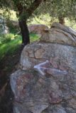 Three_Sisters_Falls_162_01242016 - Once we got down to Boulder Creek, we noticed these spray-painted white arrows on specific boulders providing hints as to where the 'trail' continued