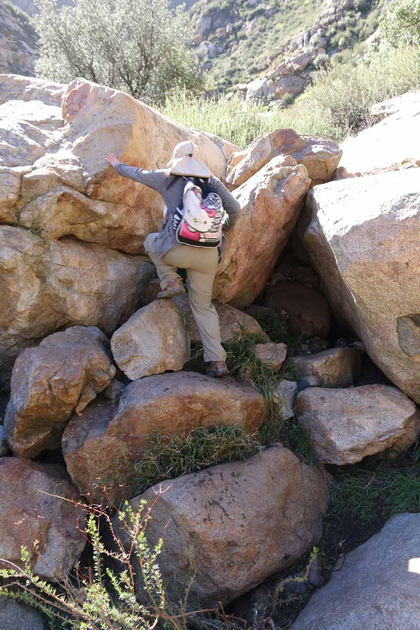 This was one of the boulder obstacles that Julie and I had to scramble over