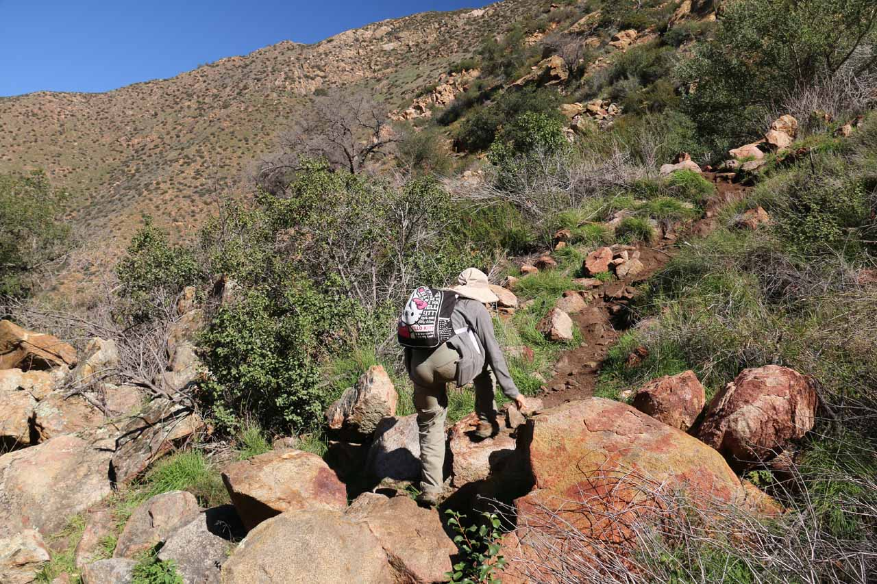 Boulder scrambling on the return hike. This time we stayed on the right side of Boulder Creek looking downstream