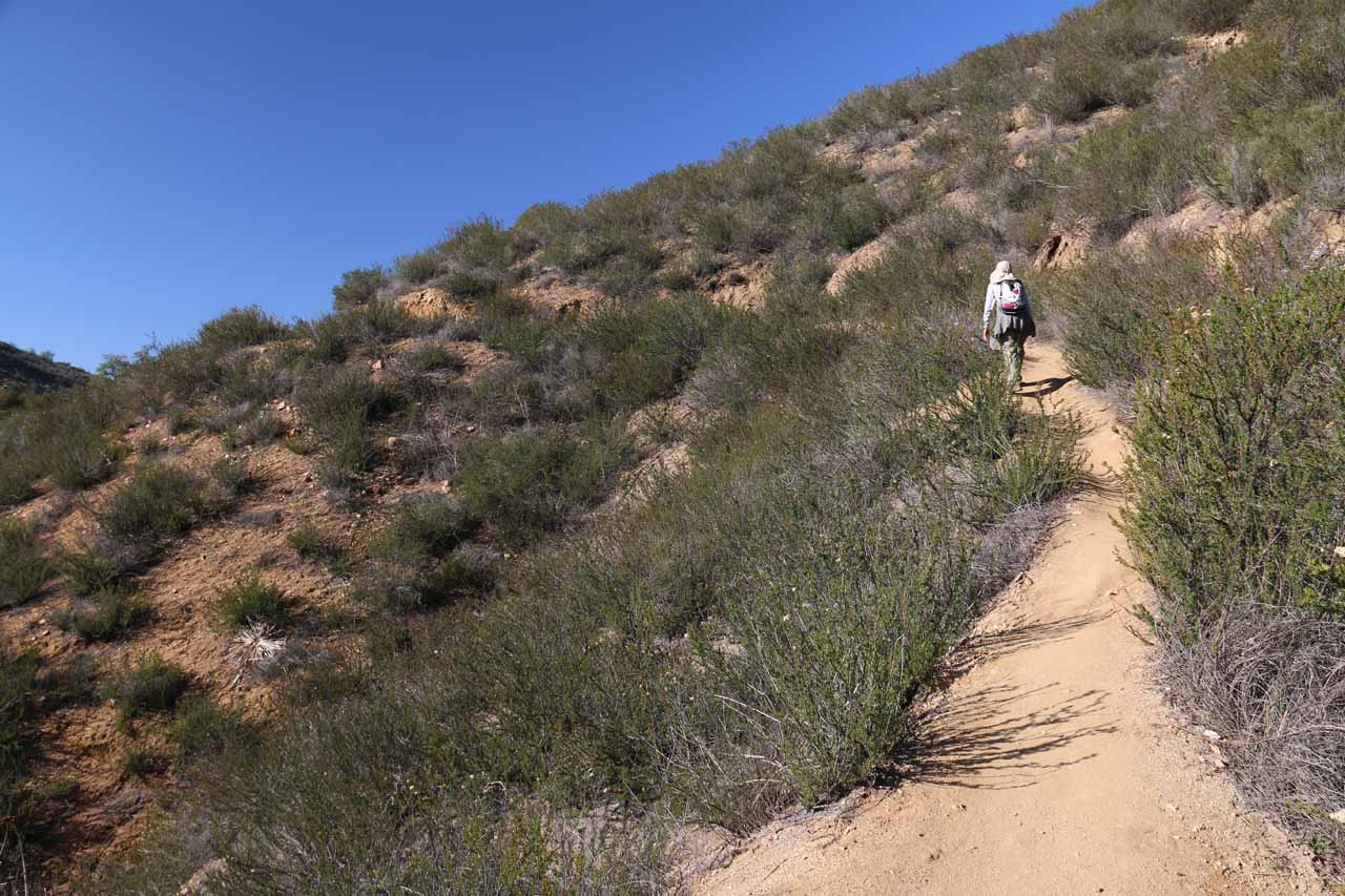 Even though the hike was still uphill on the return, it felt like a relief after we had gotten past the steep scrambling