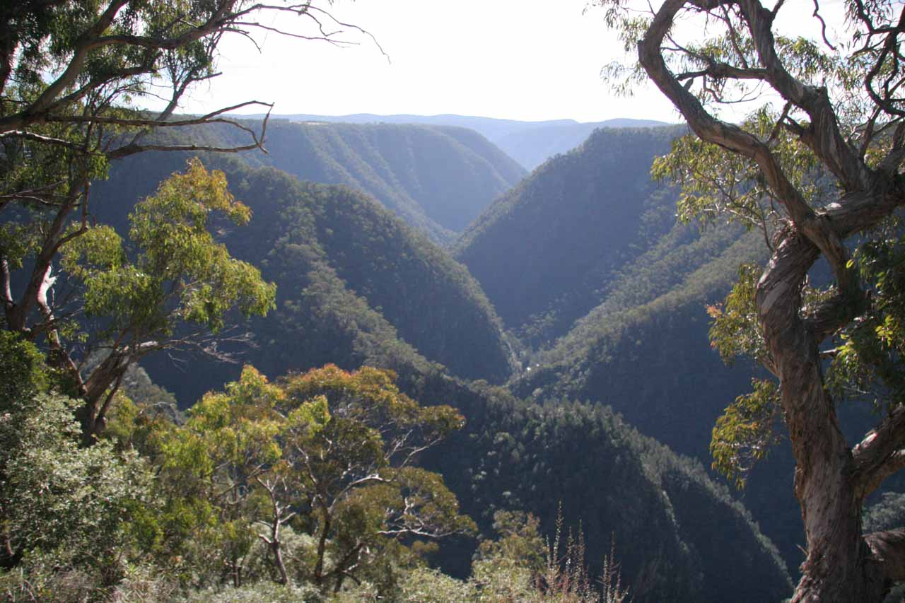This was the lookout into the Tia Gorge from the end of the easy track past the lookout for Tia Falls