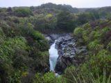 Toakakura_Falls_005_11172004 - Direct look at Toakakura Falls or what I thought was it