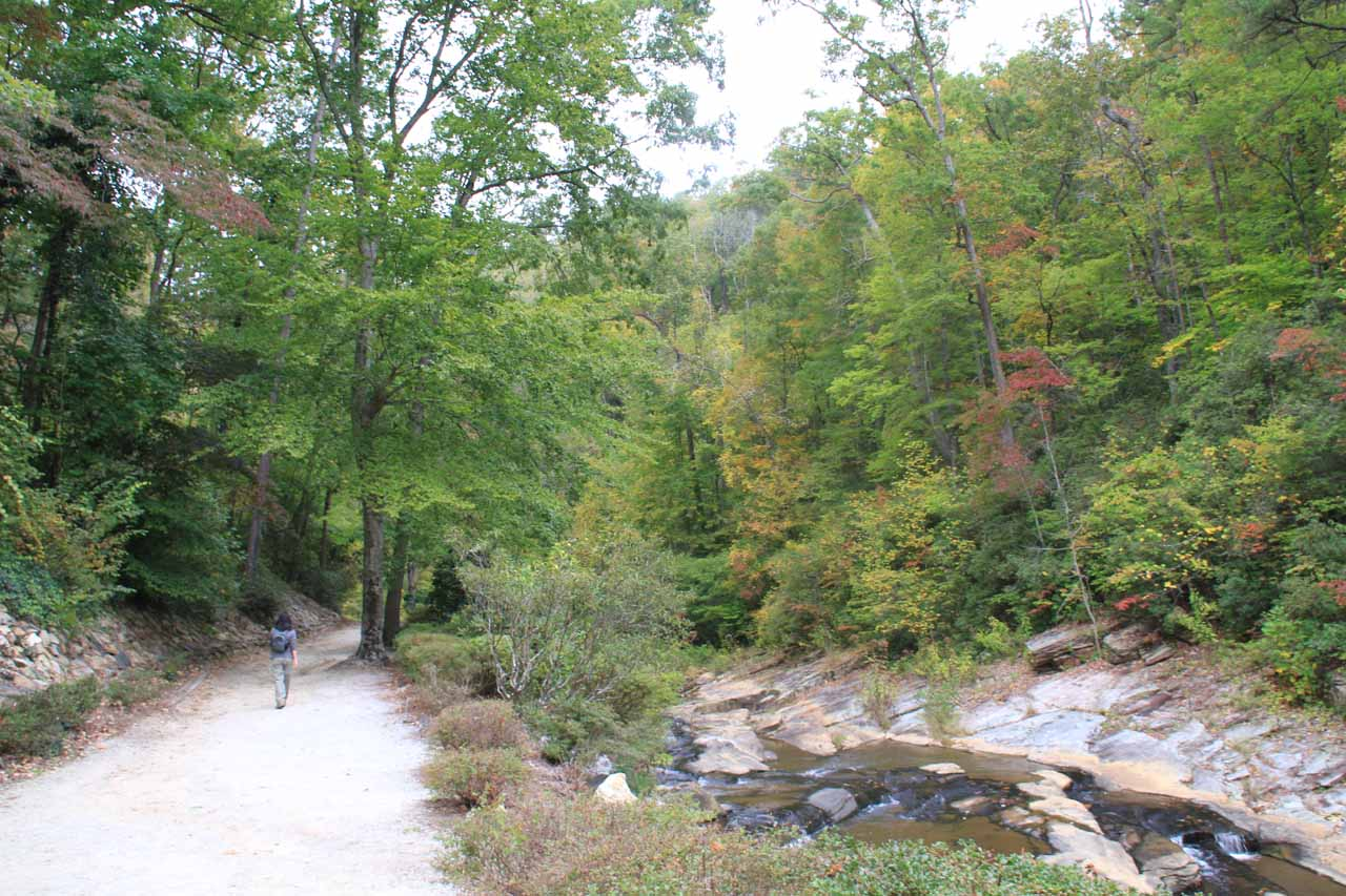 The trail to Toccoa Falls