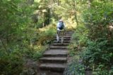 Toketee_Falls_023_07142016 - Mom going up one of the steps we needed to climb on the way to Toketee Falls after the initial flat stretch