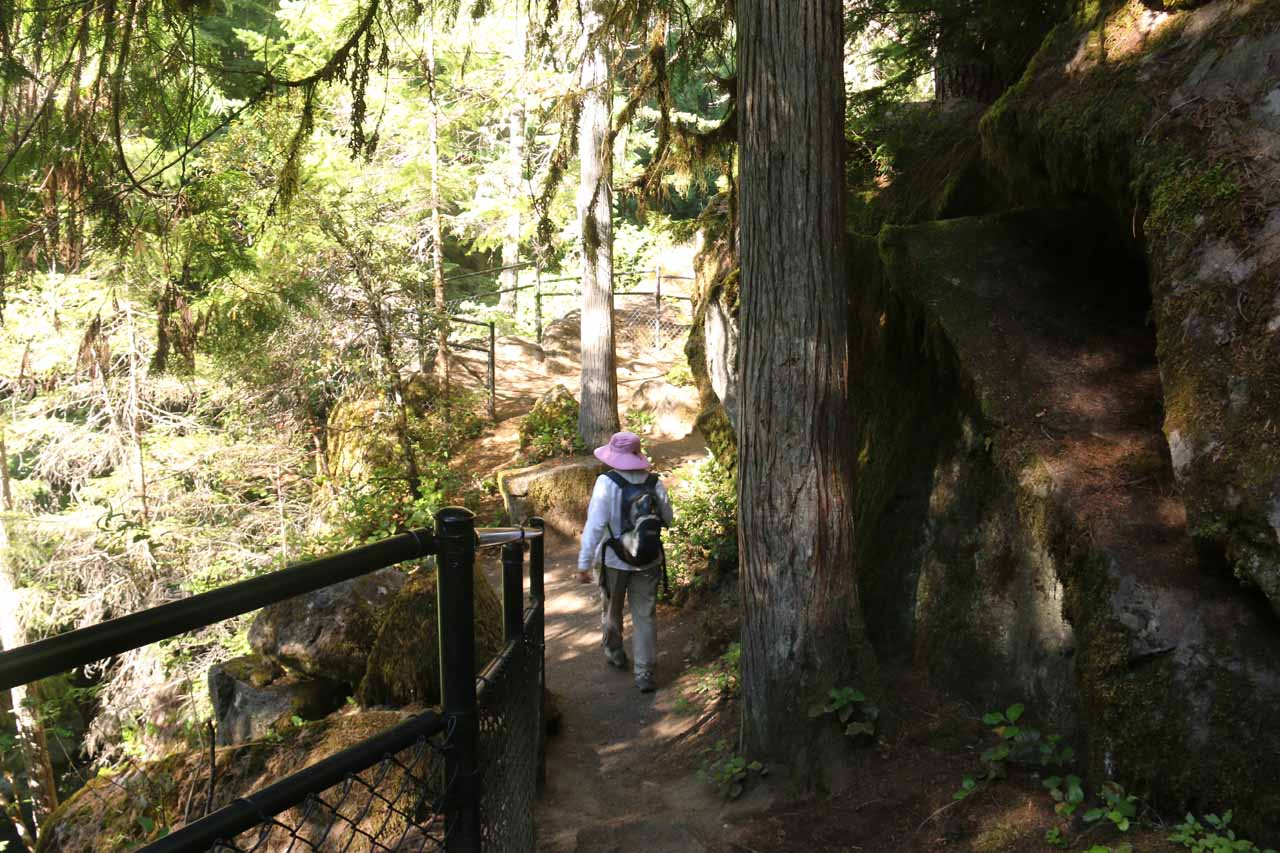 The Toketee Falls Trail was sandwiched between the North Umpqua River and these interesting rocks