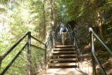 Toketee_Falls_032_07142016 - Mom going up this set of steps on the way to Toketee Falls