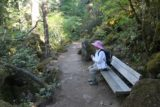 Toketee_Falls_036_07142016 - This was the rest bench that Mom took advantage of after all the climbing of steps on the way to the Toketee Falls