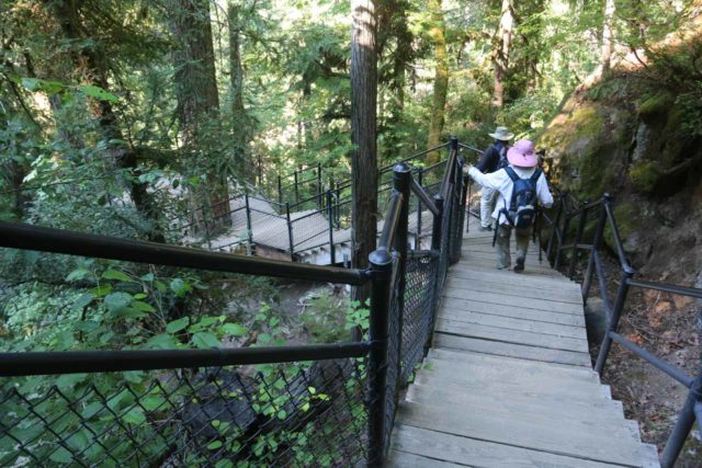 Toketee_Falls_044_07142016 - Dad and Mom making their way down the steps to the overlook of Toketee Falls at the end of the official trail