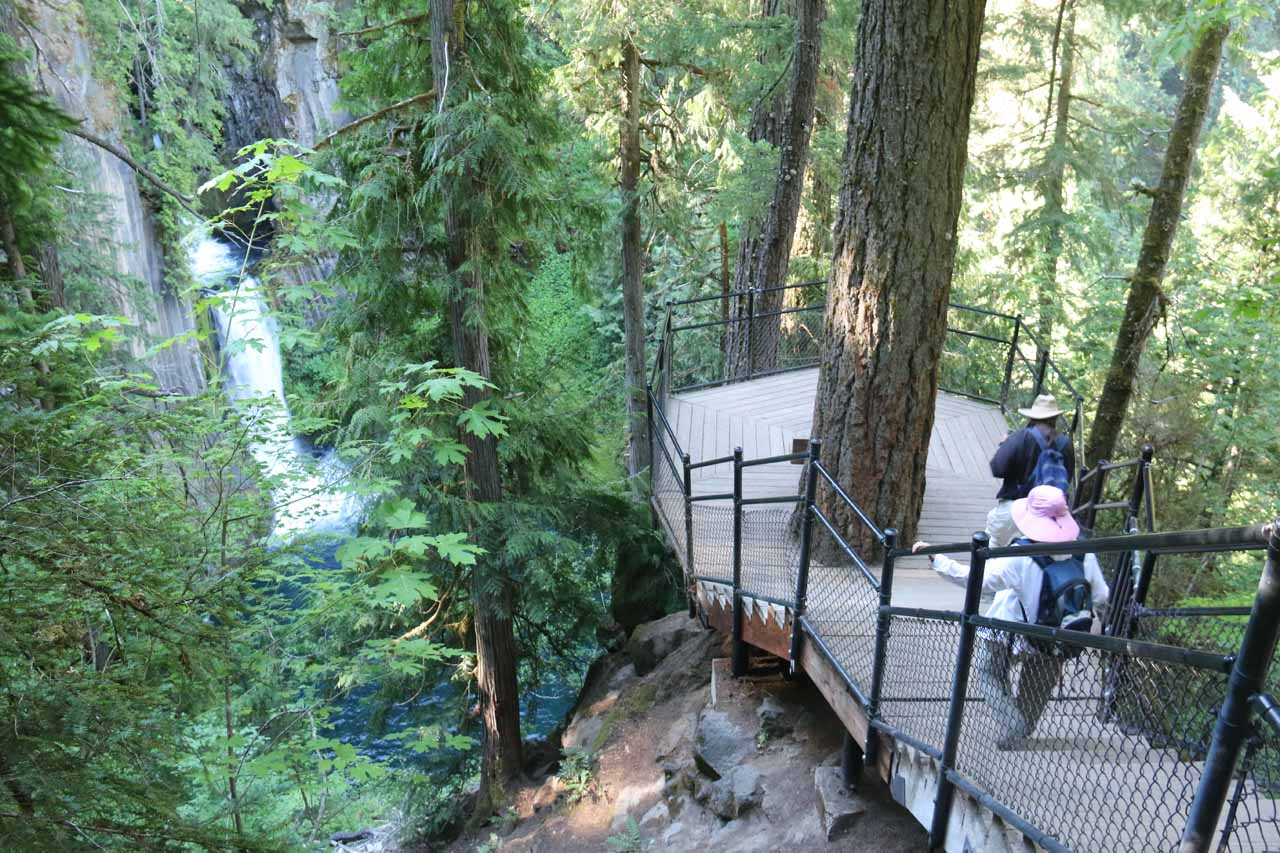 Descending to the end of the official trail which yielded a gorgeous view of Toketee Falls