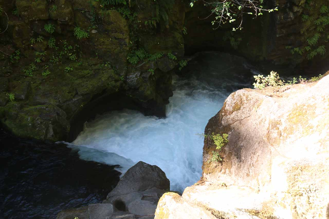 During the return hike, we noticed one spot along the North Umpqua River where there was this kind of heart-shaped depression where the river must have been whirlpooling and drilling these circles into the neighboring rocks