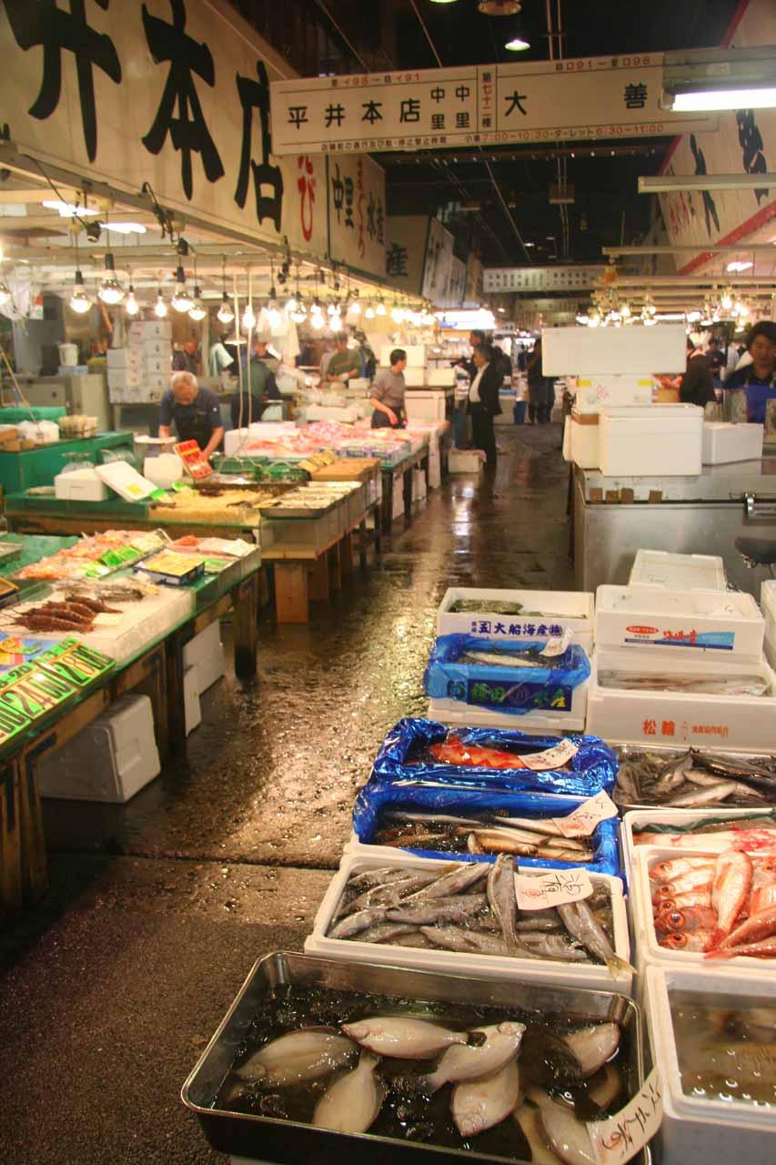 Inside the Tsukiji Fish Market