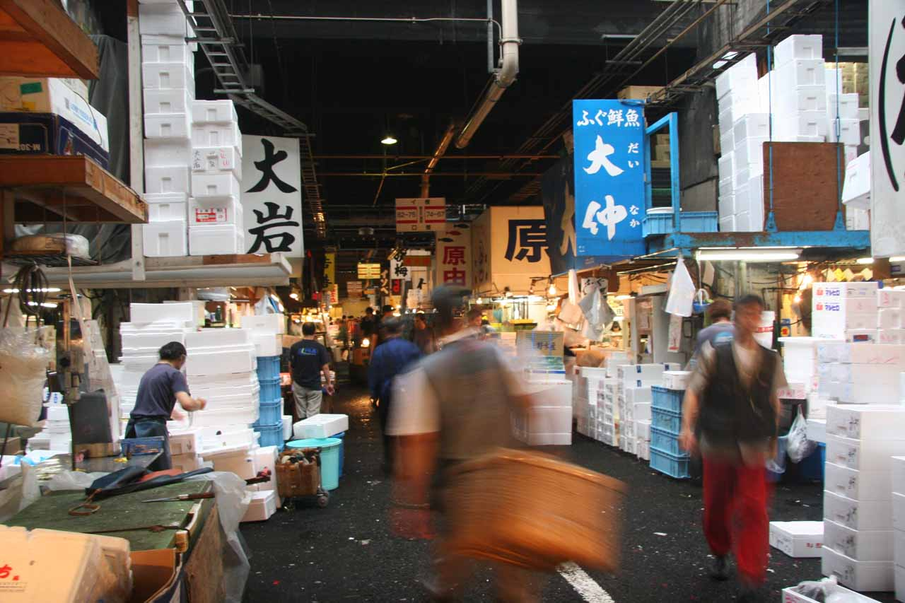Even though we missed the action, it was still busy at the Tsukiji Fish Market