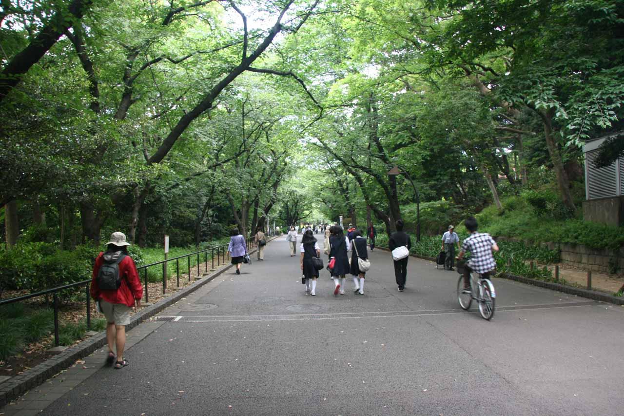 Julie walking in Ueno Park in Tokyo