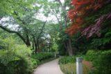 Tokyo_079_05212009 - Ueno Park