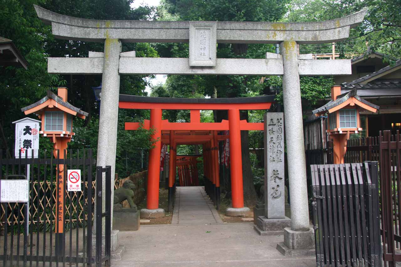 A series of torii archways at Ueno Park