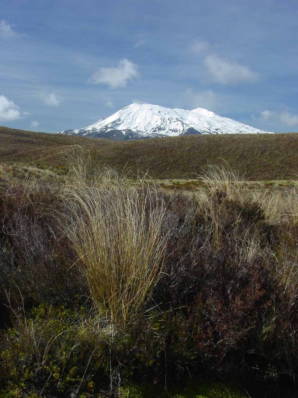 Looking towards Mt Ruapehu from the Tongariro Crossing's early sections