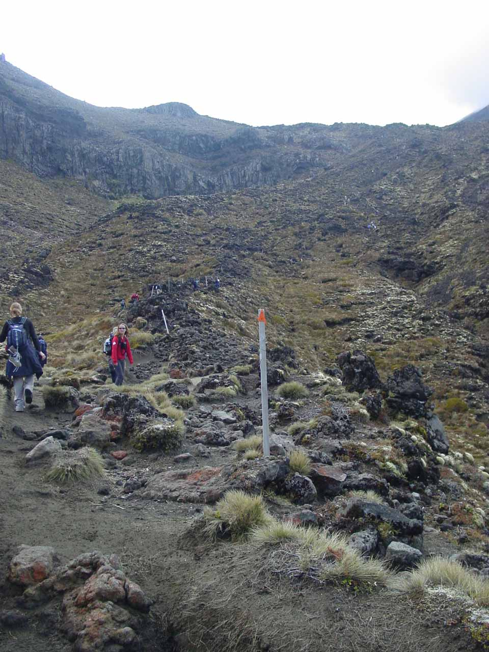 On the steep climb up to the South Crater on the Tongariro Crossing