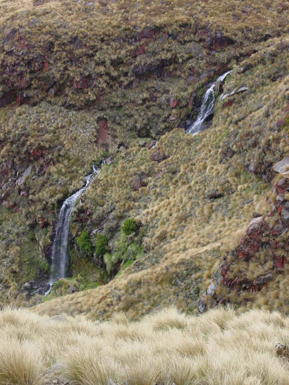 Looking down towards the thermal cascade that I called 'Ketetahi Hut Falls'