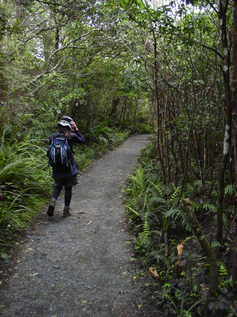 Julie continuing on amidst the lush and dense bush at the tail end of the Tongariro Crossing