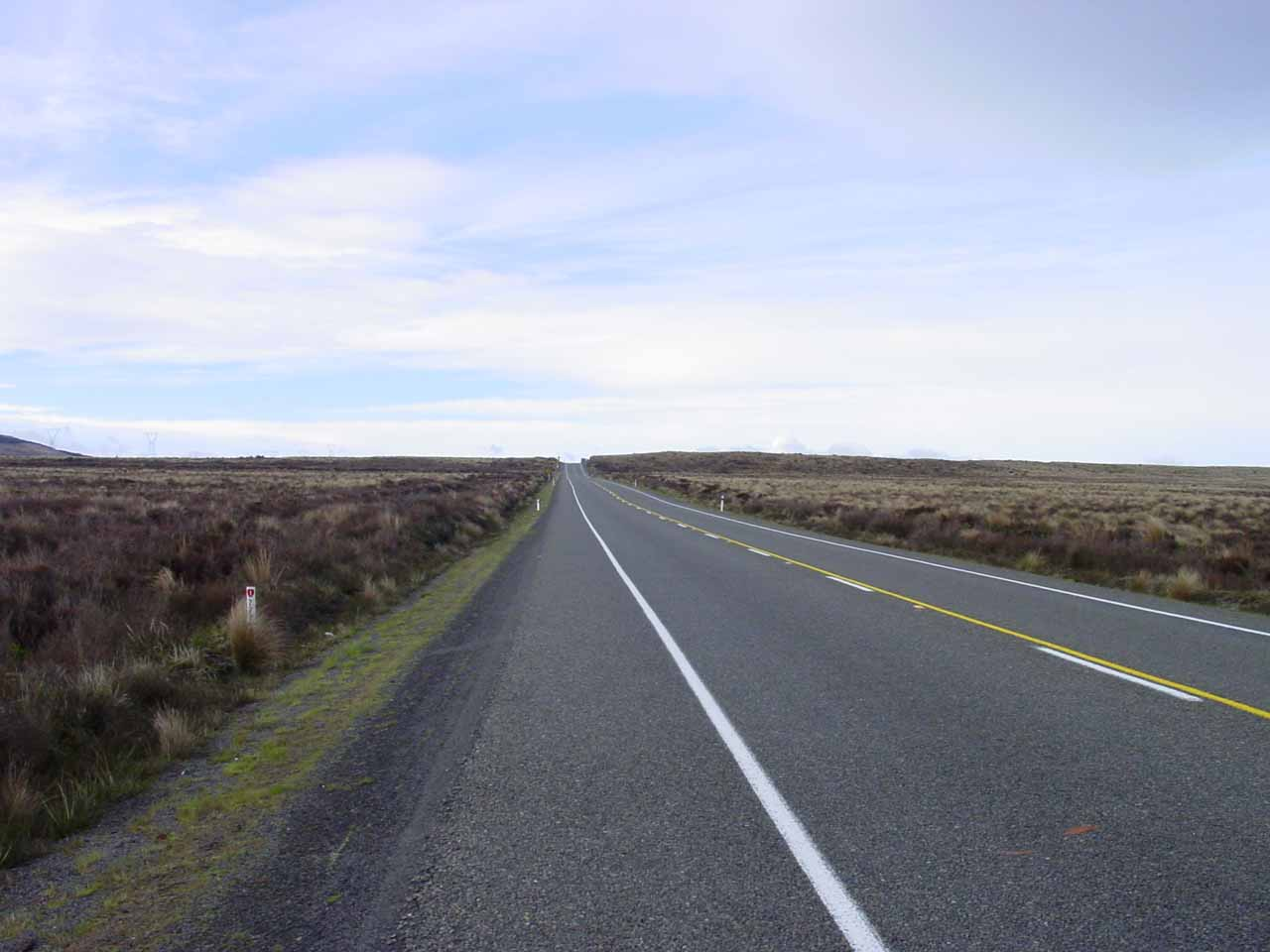 On our way to Ohakune from Turangi, we took the Desert Road, which seemed true to its name