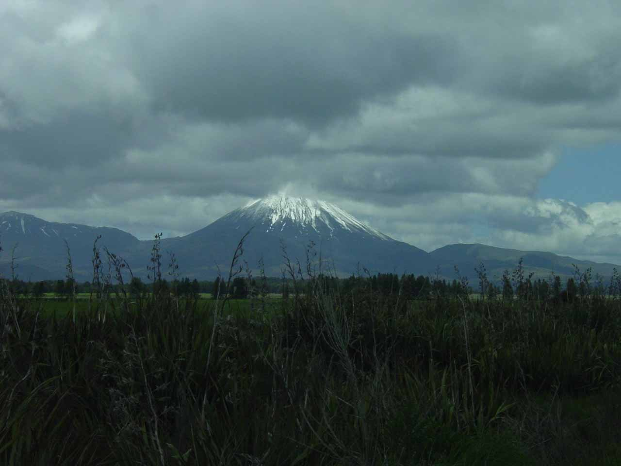 Looking towards Mt Ngauruhoe from SH47