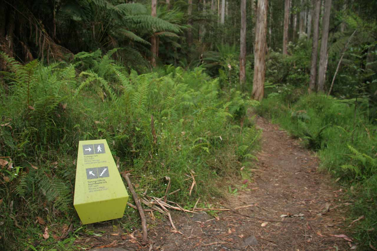 The trail is quite well-signposted