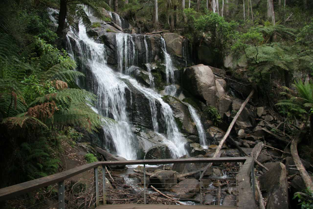 View of Toorongo Falls from the viewing platform