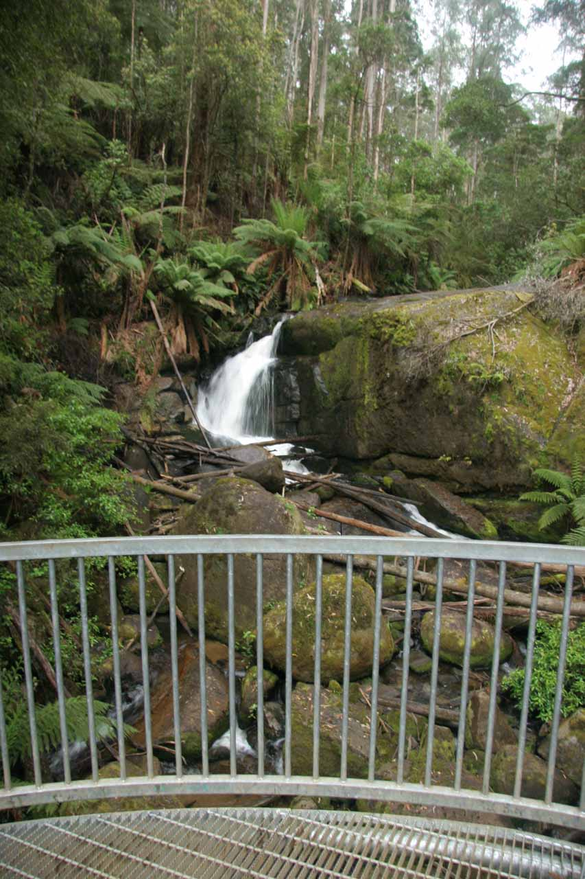 At the metal viewing deck for the Amphitheatre Falls
